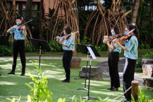 hawaii string quartet