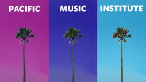 PMI zoom background palm trees